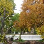 Berlin 28 to 31 October 2011 065