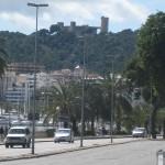 Palma 095